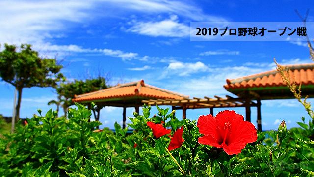 2019プロ野球オープン戦(沖縄)