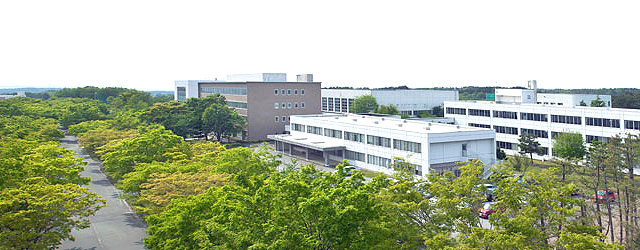 八戸学院大学