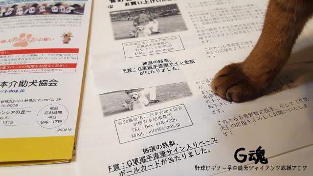菅野と介助犬協会のコラボアイテム抽選プレゼントで当たったのはE賞とF賞